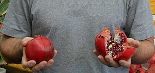 Blog Thumbnail_Robbie with pomegranates