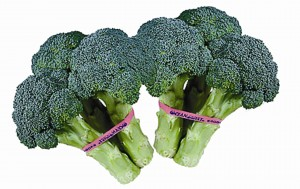 Broccoli is a great sources of vitamin C.