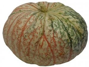 One too many pumpkin