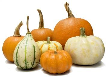 Pumpkins&gourds
