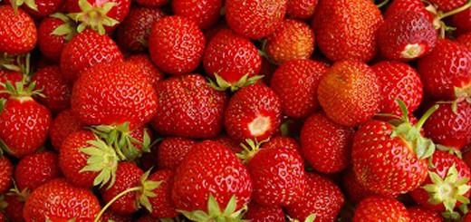 Strawberries_thumbnail