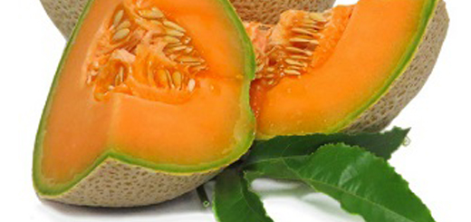 Cantaloupes_thumbnail